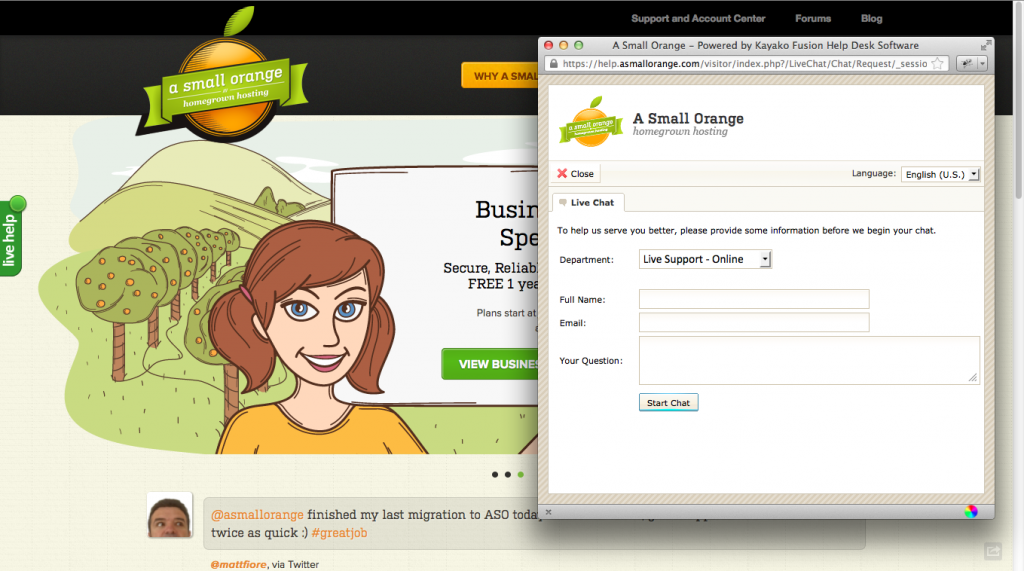 Screenshot of A Small Orange Website's Live Chat